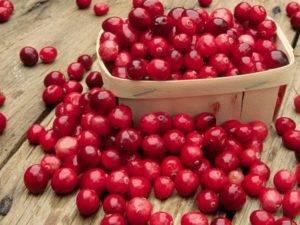 Свойства ягоды клюква