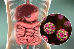 Коронавирус и желудочно-кишечный тракт