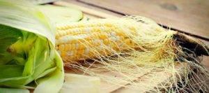 кукурузными рыльцами