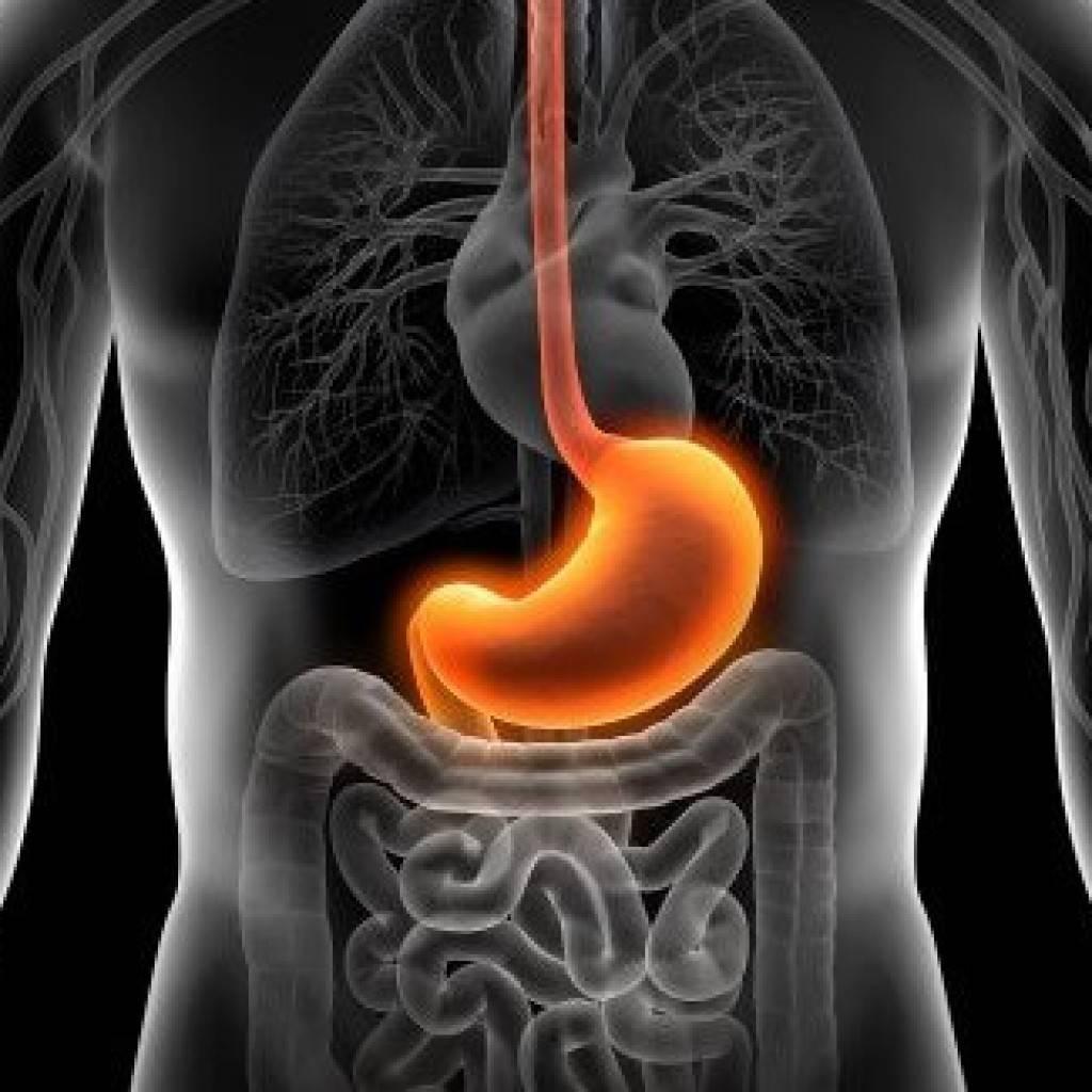 Дуодено гастральный рефлюкс - лечение ДГР желудка
