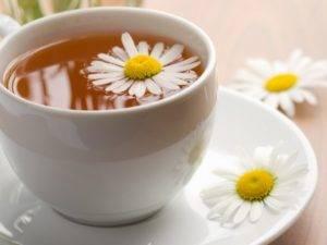 Пьют ромашковый чай
