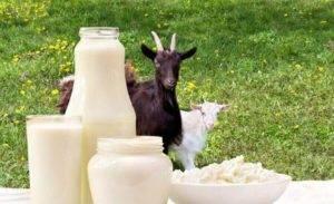 Козье молоко при гастрите