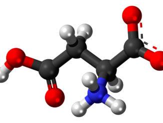 аминокислоты при гастрите