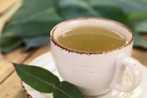 Чай при гастрите из эвкалипта