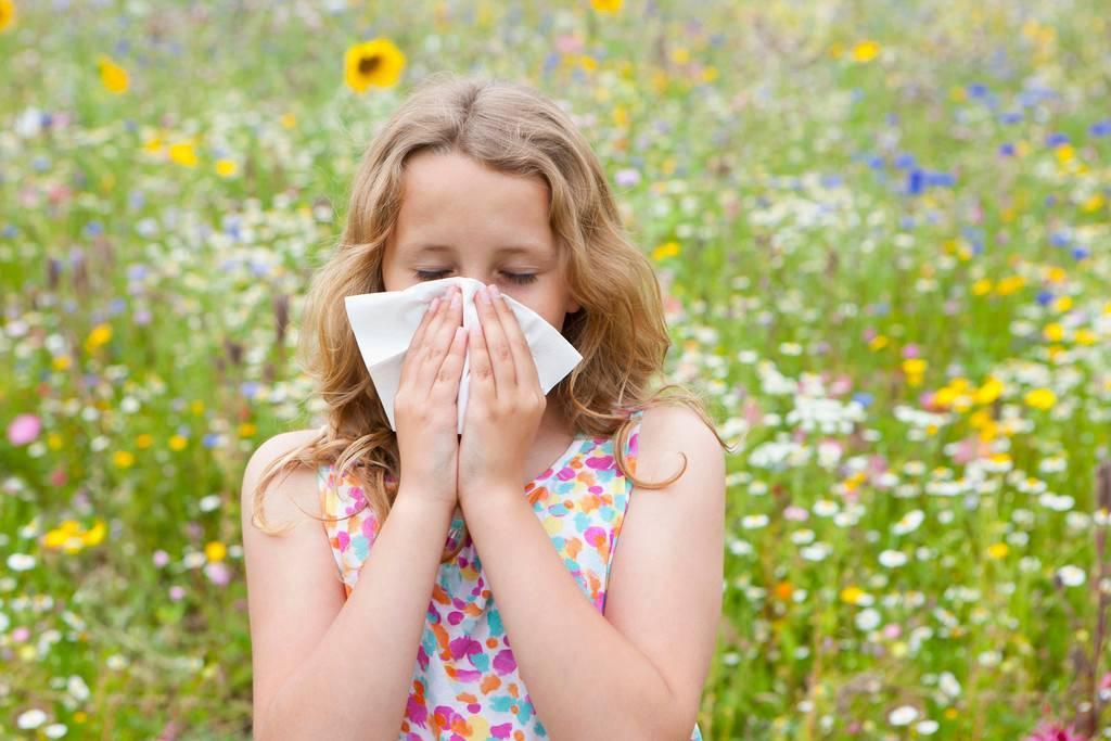 стенки гостиную алергия в картинках этом