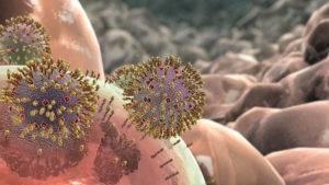 Кал при коронавирусе