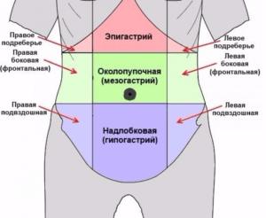 Область эпигастрия