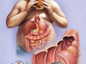 Нарушение органов желудочно- кишечного тракта у людей с ожирением