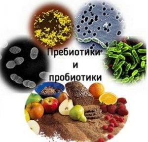 И пребиотики, и пробиотики полезны для кишечника, но помогают по-разному