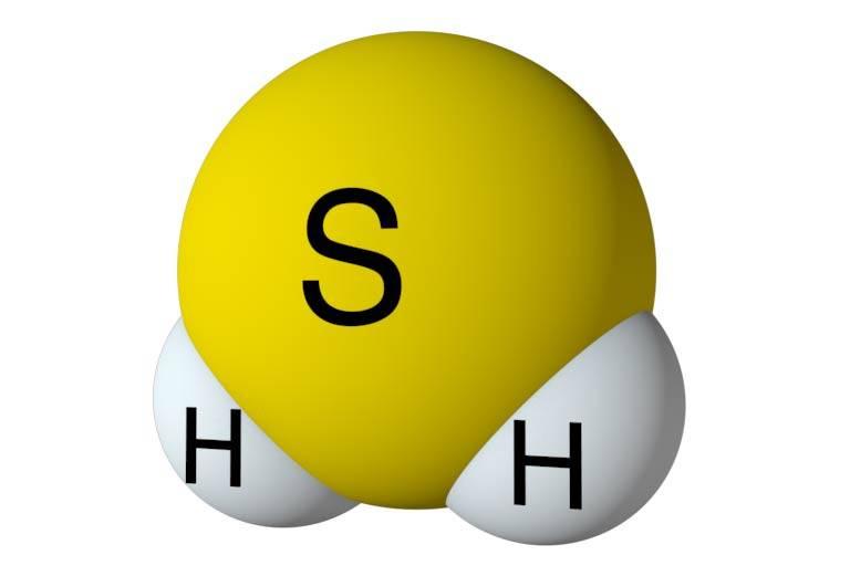 Сероводород в желудке газы