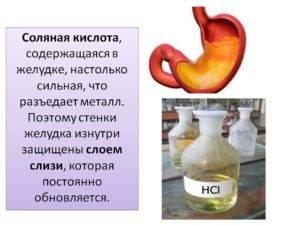Соляная кислота в желудке
