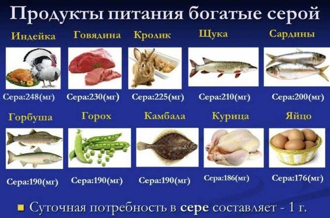 какие продукты содержат серу