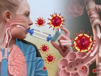 Бронхи при коронавирусе