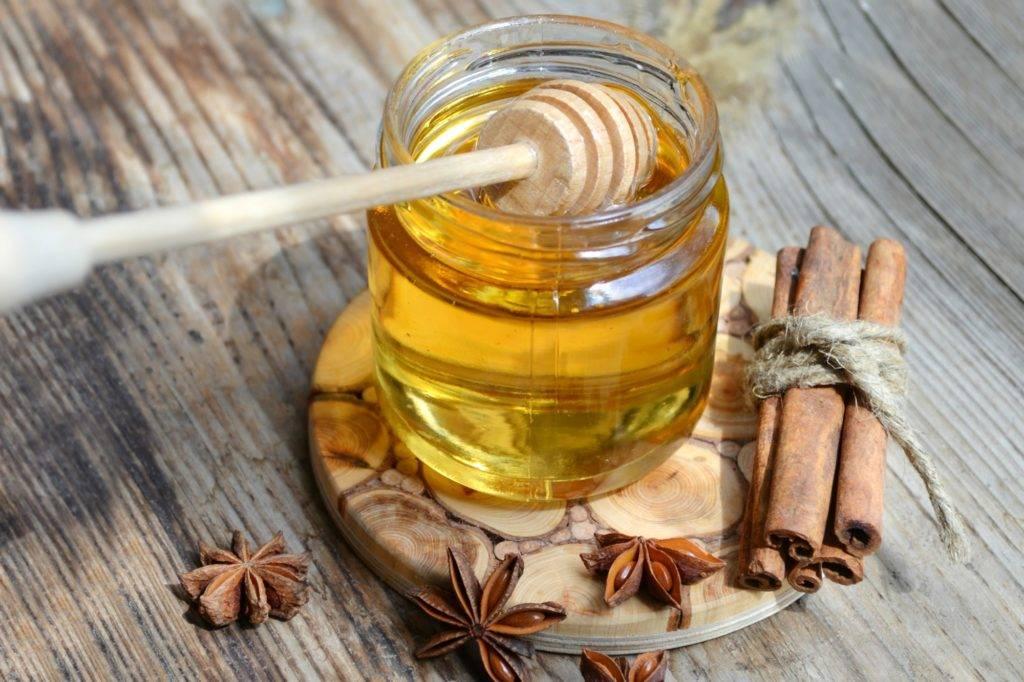 Рецепты с медом для желудка отзывы