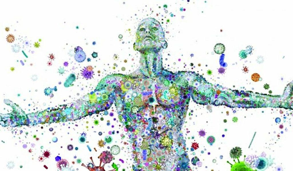 микробиом человека