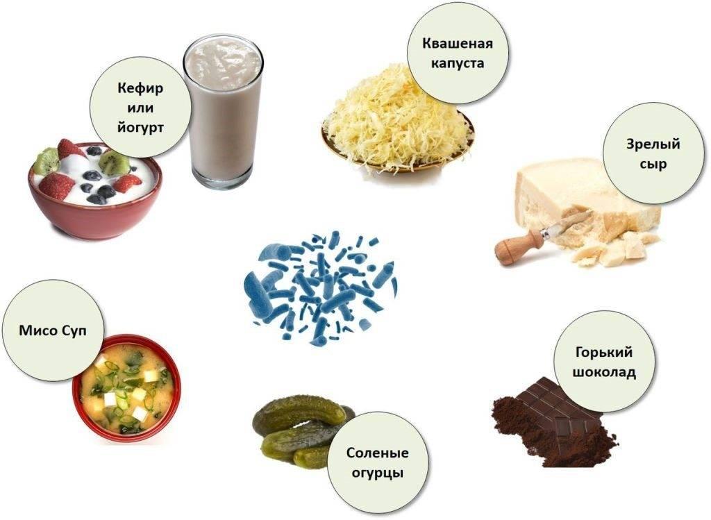 продукты богатые пробиотиками