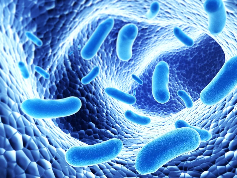 Кишечная дисмикробия